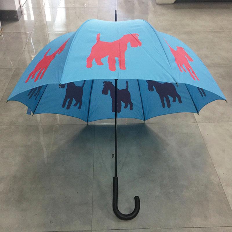 Blue-color-umbrellas-with-dog