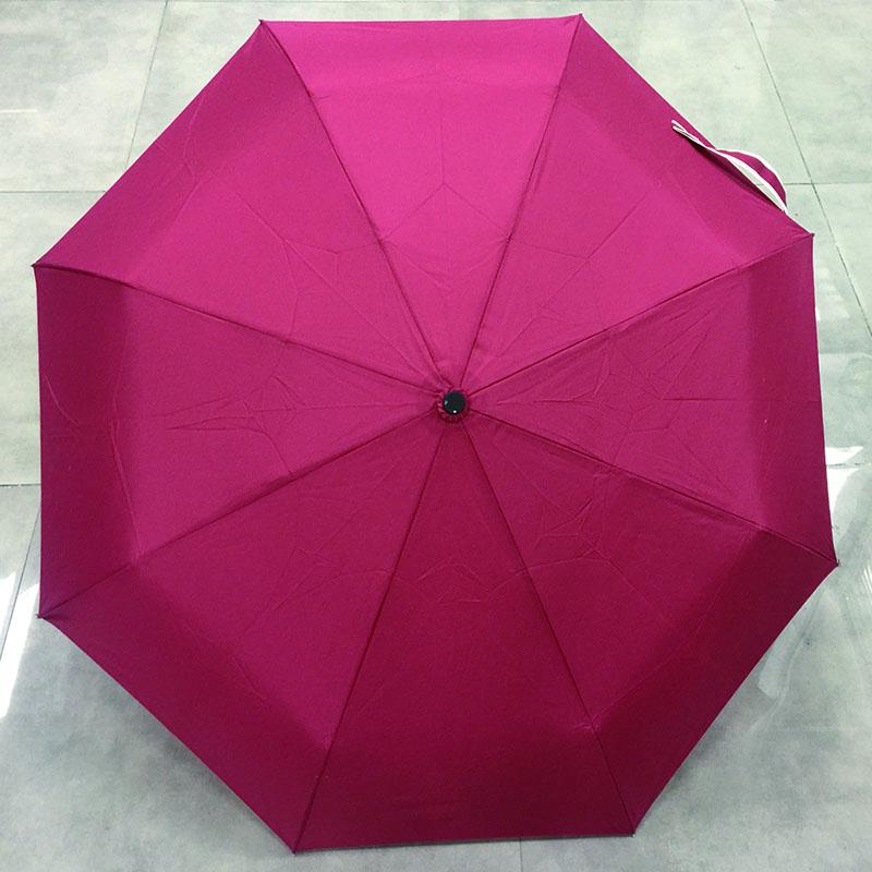 Compact-Auto-Open-Close-Folding-Umbrellas
