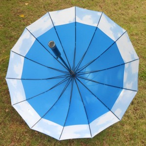 Auto Open Manual Close 190T fabric Waterproof Windproof Sport 16ribs blue straight Umbrella with long handle